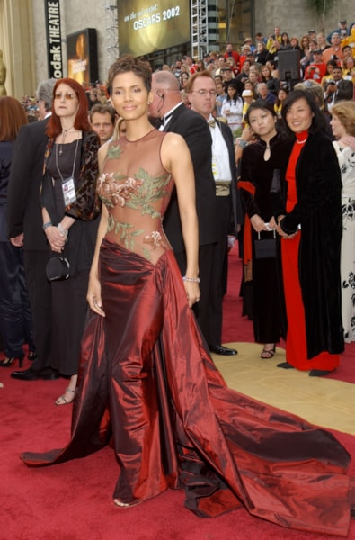 Halle Berry in Elie Saab (Photo by Vince Bucci/Getty Images)